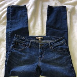 CAbi Jeans size 6 blue in color